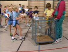 Ballspiele in der Grundschule