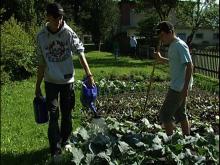 Projektarbeit in Kooperationsklassen. Beispiel Gartenprojekt