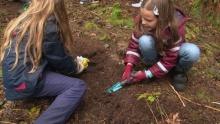 Schülerinnen graben im Waldboden
